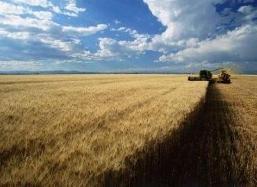 Agro, la minería invisible que altera el mundo