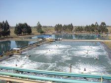 Laboratorio de aguas con tecnología de punta para garantizar la calidad del efluente