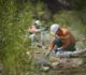 Minera Alumbrera recertificó estándares ambientales internacionales